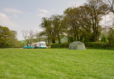 Part Of Our Camping Field in Devon on Dartmoor National Park